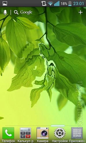 Живые обои Galaxy S4 Листья: весенний листопад