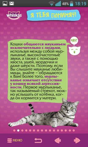Обзор приложения СаМЯУчитель для Android: о чем говорят кошки