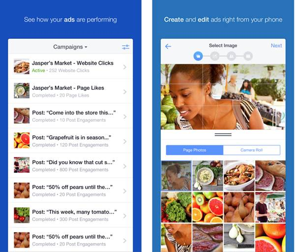 Скриншот приолжения для управление рекламой в Facebook для iPhone