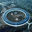 Сотрудники Apple работают стоя: Тим Кук о новой штаб-квартире Apple