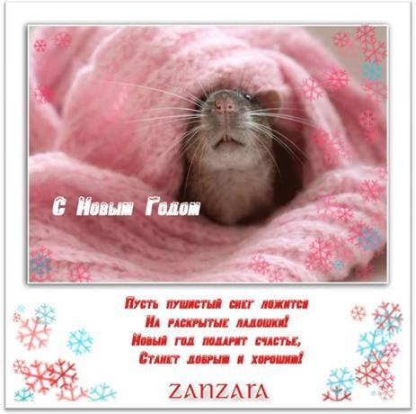 Новогодние поздравления от компании ZANZARA